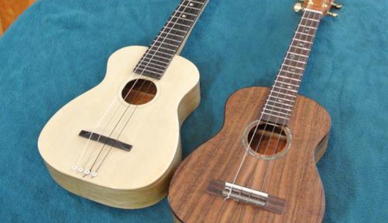 ukulelefreak chord progression & tabs